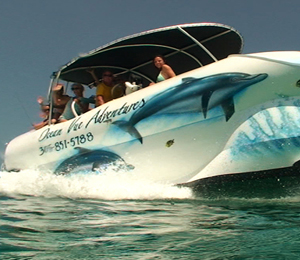 Key West Glass Bottom Boat Tour - The Ocean Vue Adventure