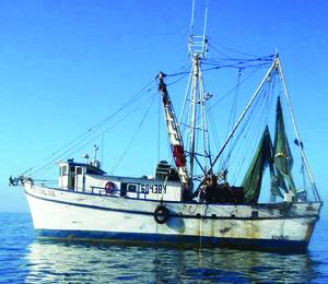Gulf Shrimp Boat Trips