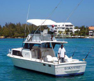 The Born Free II - 35' Allman Sportfisher
