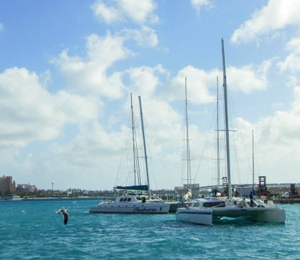 Seahorse Sail and Snorkel Adventure