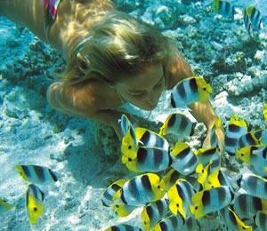 Best Snorkeling Beach In Freeport Bahamas