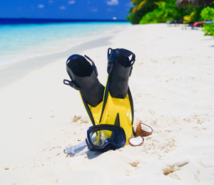 Key West Snorkeling Gear