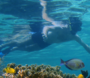 Key West Snorkeling Spots