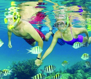 Futuristic Snorkeling Tours in Key West