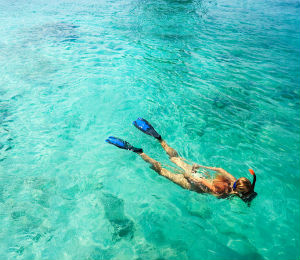 Top 3 Snorkel Brands