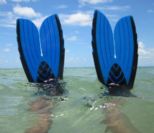 Get the Right Type of Snorkel Fins