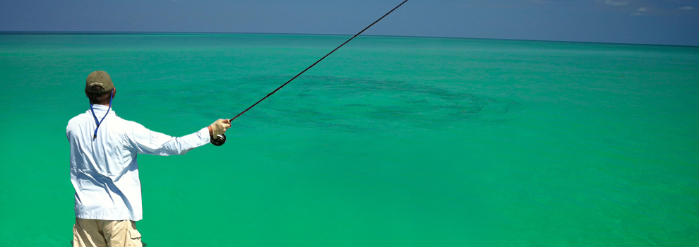 Key west flats fishing key west visitor guide for Key west flats fishing