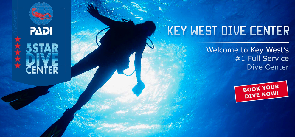 Key West Scuba Diving