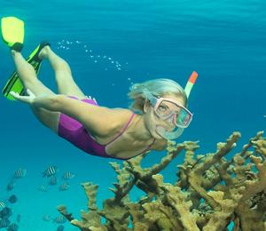 Bahamas Adventure Snorkel