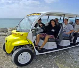 6 Seater Electric Car