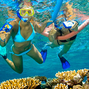 Miami to Key West Bus Tour with Reef Snorkeling