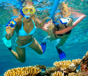 Miami to Key West Day Tour with Reef Snorkeling