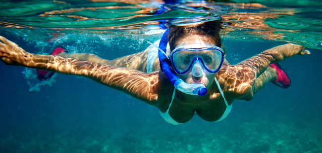 rise reef morning snorkel best on key west