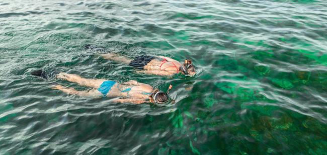 Sail Snorkel Kayak