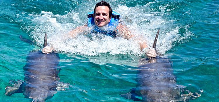 Dolphin Royal Swim VIP  image 3