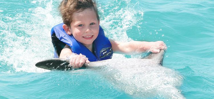 Dolphin Swim Adventure image 1