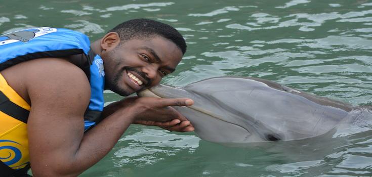 Dolphin Lovers' Swim image 2