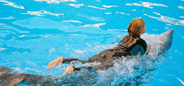 Dolphin Swim & Ride image 4