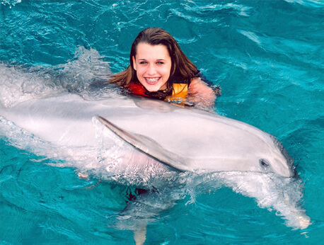 Ocho Rios - Dolphin Encounter