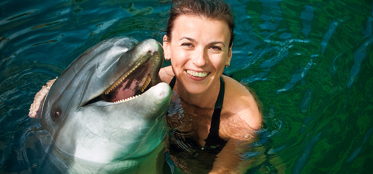 Dolphin Encounter image 4
