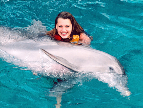 Riviera Maya - Dolphin Encounter