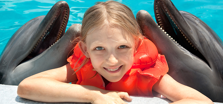 Dolphin Encounter & Admission image 4