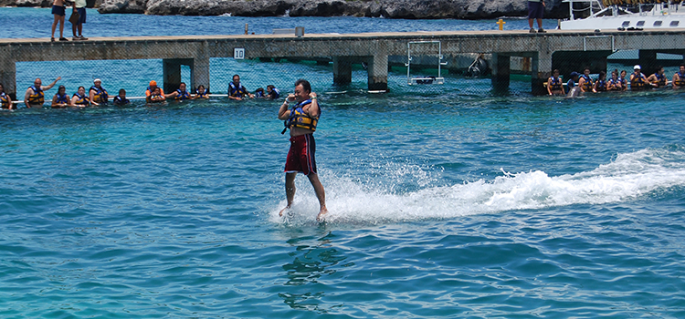 Dolphin Royal Swim image 3