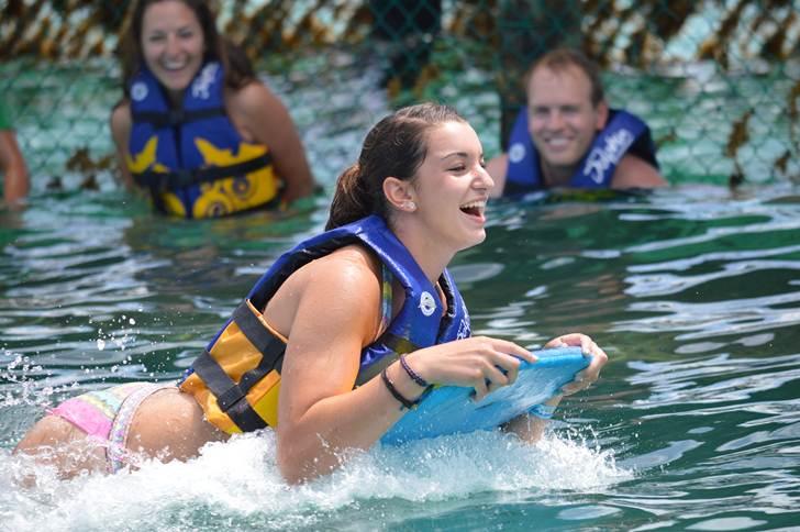 Dolphin Swim Adventure + Ferry + Transfer  image 1