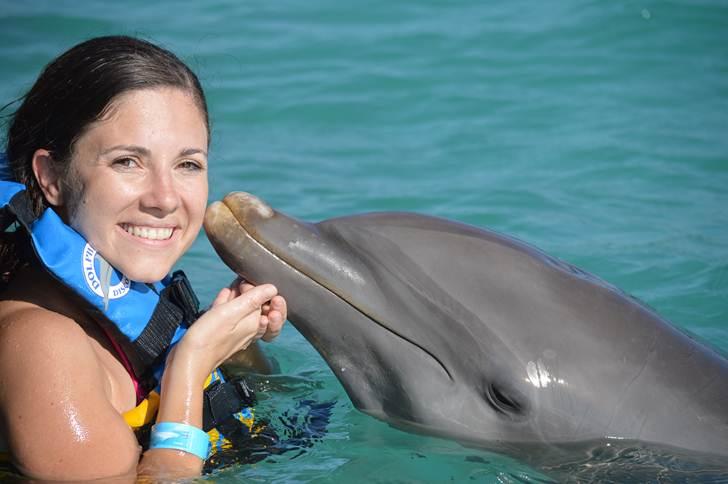 Dolphin Swim Adventure + Ferry + Transfer  image 3