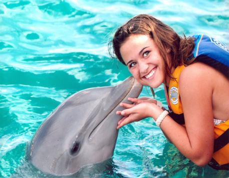 Dolphin Discovery Swim + Ferry St. John