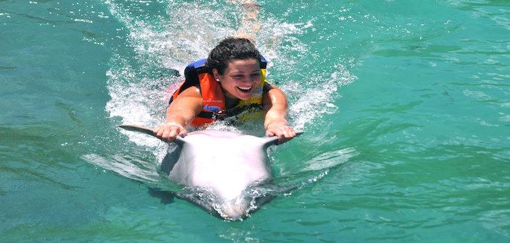 Dolphin Swim Adventure + Ferry St. John  image 4