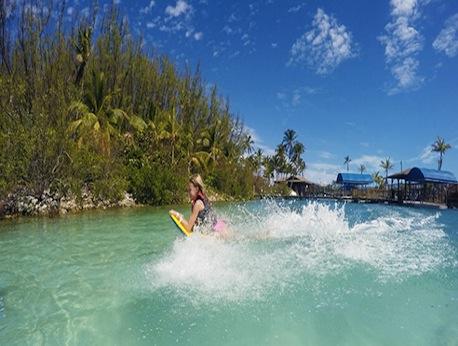 Blue Lagoon Royal Dolphin Swim