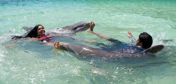 Blue Lagoon Royal Dolphin Swim image 1