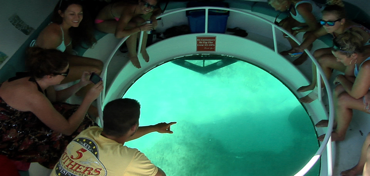 Ocean Vue Adventures Snorkel and Dolphin Watch
