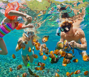 Private Fishing and Snorkeling Charter