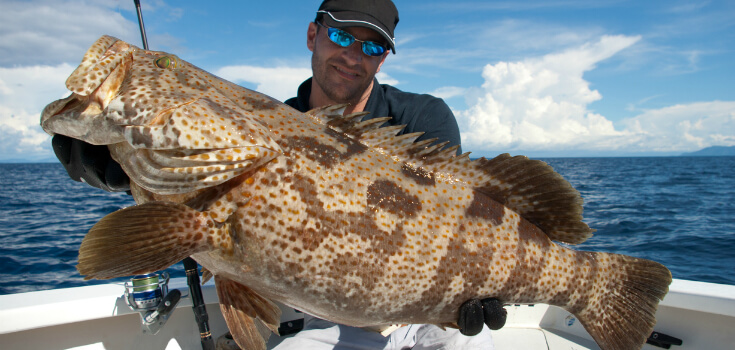Reef or deep sea fishing charter for Nassau fishing charters