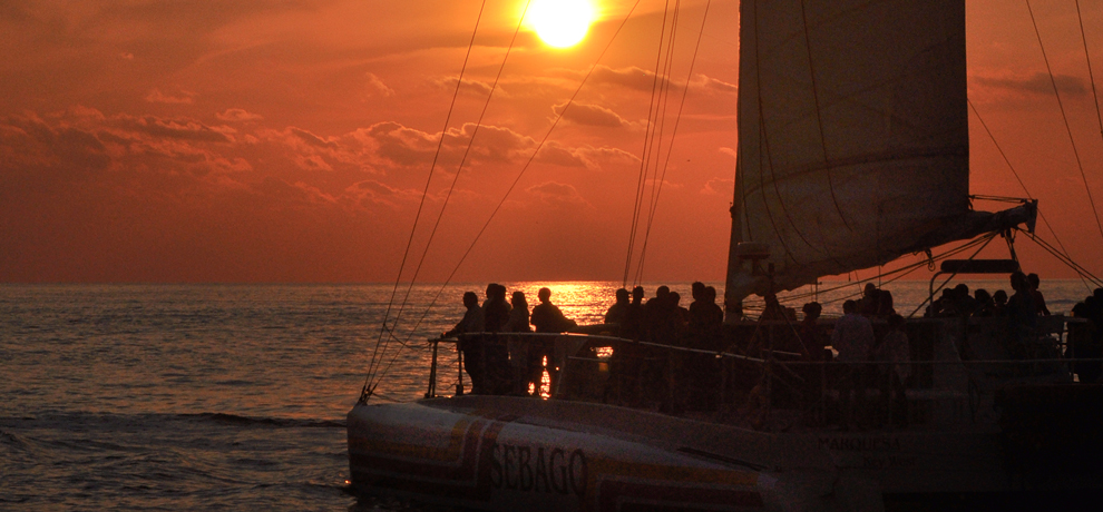 Reef Snorkel and Sunset Cruise Combo