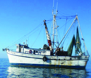 Gulf Shrimp Boats