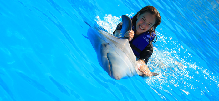 Cabo Dolphin Kids Program