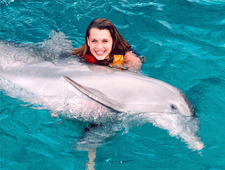 Cabo San Lucas - Dolphin Trainer for a Day