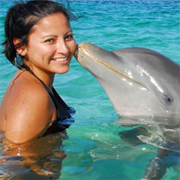 Blue Lagoon Dolphin Close Encounter