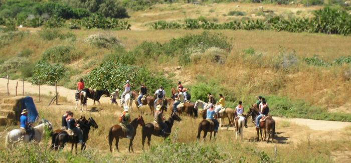 Horseback Riding Canyon Tour