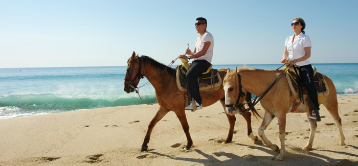 Private Horseback Riding