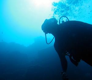 Marine Preserve Dive Adventure