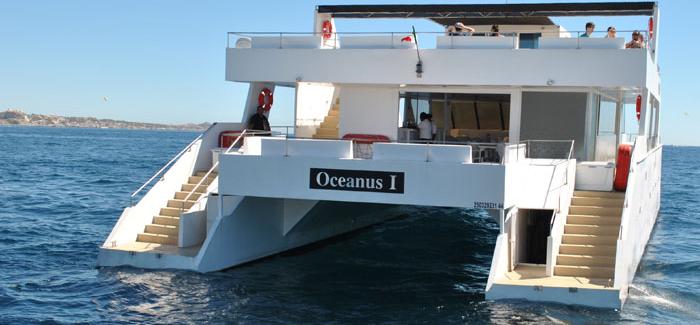 Golden Coast Snorkeling Cruise