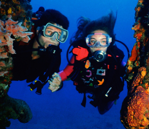 Arcos Scuba Expedition
