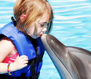 Dolphin Kids Encounter