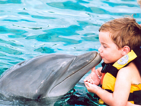 Nuevo Vallarta - Dolphin Kids Encounter