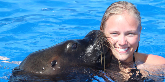Vallarta Sea Lion Encounter