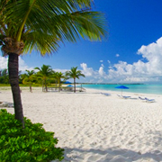 Grand Bahama Beach Day Package